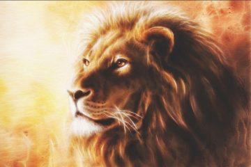 Lion fractal AnteAr